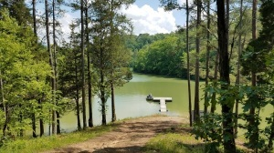 June 12th Absolute Auction: Douglas Lake Point, Prime Seymour & Pigeon Forge Building Lots & Home Near Sevierville