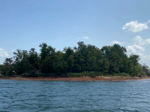 Douglas Lake Islands, Multi Property Real Estate Auction
