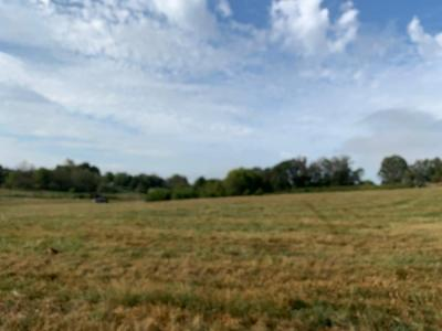 Lot 3 has 5 acres and 291ft of Temple Rd frontage. This nice lot is all grassland, most lays very well with some views of beautiful bluff mountain. some draingage area at the back of lot 3. has good access from Temple Rd and several good building sites.
