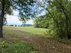 Lot 14 has 8.1 acres and 778 ft of Parton Circle frontage. Approximately 1/4 is cozy hardwood forest and balance is in llush green pasture. our largest tract is the picture perfect baby farm with so many prime building sites to choose from. mountain views
