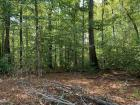 lot 2 has 2.98 Acres and 446ft of Tate Rd. frontage. This is a wooded lot covered with gorgeous hardwoods and has good access from Tate Rd. Lot 2 is approved for 4 bedrooms. Note on map: 30' easement at end of lot.