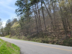 Lot 2 - 7.13 AC with beautiful, long and wide ridgetop with views and 300ft fronting a nice, small stream. You may want to walk up onto the ridgetop to appreciate this very nice wooded tract.