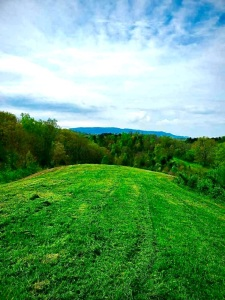 Lot 9 has 14.62 AC and fronts over 100ft of S. Knob Creek Rd. This lot has outstanding mountain views from several gorgeous ridgetop building sites. Most all of this tract was cleared and farmed at one time and there are still several attractive grassy ar