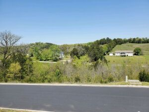 Lot 84 of Timberlake Bay. TVA Land is at the back of the lot, water does not reach the lot. HOA dues are $600 per year. Gated, pool, clubhouse, water, sewer and underground electric. 1000 sq ft minimum for cabin or home with overnight rentals permitted. S