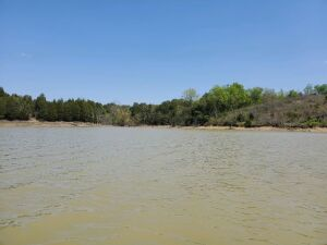 Lot 14-C of Rainwater Cove -- Douglas Lake Front -- beautiful, level to very gently sloping land with cozy hardwood forest. Only access is by boat (or helicopter), but this location is prime on the upper portion of popular Muddy Creek Cove of Douglas Lake