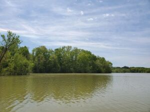Lot 22 of Goodfield Landing near Decatur, TN. PRIME Chickamauga Lake Front -- a top Bass fishing lake in the USA -- beautiful lot that lays very well all the way from the road into the lake. Lot gets wider as it goes to the water. Front is open grassland,