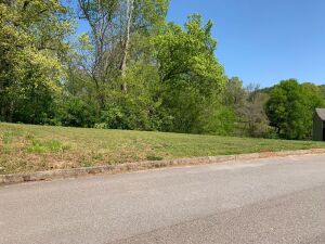 Lot 58 of River Vista a French Broad River community in Sevierville, Tennessee on River Vista Cir -- 3 BR approval with utility water and underground electric. A gorgeous lot that slopes down from the road making it ideal for a basement. No HOA. 1600 sq f