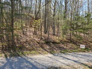 Lot 32 of Fairfield Glade, North Hampton near Crossville, Tennessee -- Beautiful hardwood trees, slopes gently up from road at cul-de-sac, very private (last short part of road is gravel). HOA dues are $550 per year. Members have use of many amenities inc