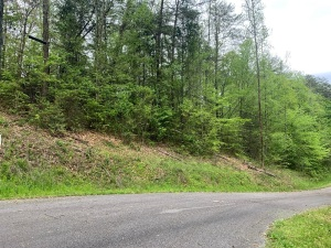Lot 12 of Fox Crossing just off Waldens Creek Rd, great .76 acre lot approved for 3 BR that slopes up from Whisper Creek Rd. — just a short drive from Pigeon Forge this is a very private wooded lot in a quiet and beautiful community