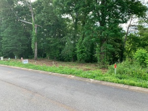 Lot 19 of Ellis Village a beautiful building lot in a great Boyds Creek Community subdivision, level with some hardwoods. No HOA fees at Ellis Village. Sewer, water, and underground utilities. See Documents for restrictions.