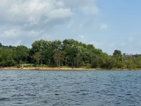 "Lot 1 ""Island"" is 63.16 total acres, please see survey under ""documents"" for location of island at full pool and other information."