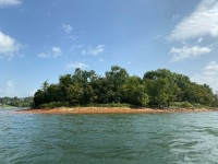 "Lot 1 ""Island"" is 63.16 total acres, please see survey under ""documents"" for location of island at full pool and other information. - 5"