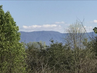7.44 Acres, Dandridge Tennessee near downtown, small stream borders property. Some mountain views, lot is wooded, mostly level to very gently rolling and sloping down to creek.