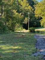 7.44 Acres, Dandridge Tennessee near downtown, small stream borders property. Some mountain views, lot is wooded, mostly level to very gently rolling and sloping down to creek. - 4