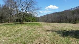 Tract 5: 41.45 AC w/hidden meadow