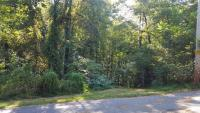 Tract 6: 6.67 acres, all cozy hardwood forest fronts paved street