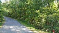 Tract 7:  0.51 ac nice wooded building lot fronting paved Cherry View Lane