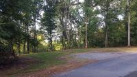 Tract 9: total of 2.68 wooded acres in 3 different pieces...