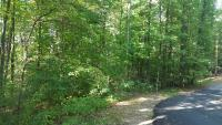 Tract 8:  2.46 ac, lays nicely along paved Orchard Dr, all wooded
