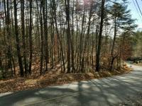 Sale 3: Wooded Home Site on Plaza Way w/City Water & Sewer