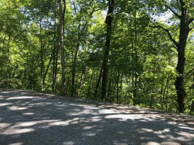 LOT 4 ON SUNSET RD. IN SHAGBARK S/D steep down from road